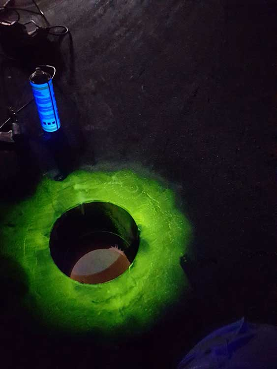 Fluorescent Magnetic Particles Examination